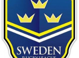 Sweden Qualifies New Match Official Educators